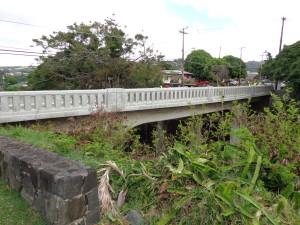 Puowaina Street Bridge